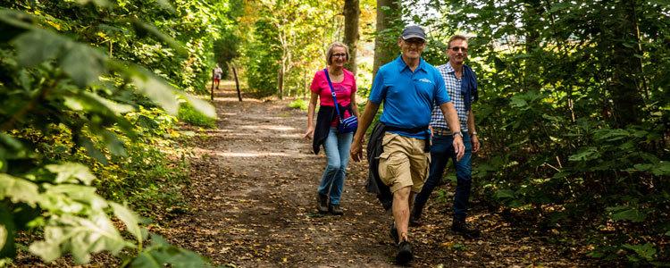 Wandlen Innen wandelen in en om turnhout toerisme turnhout